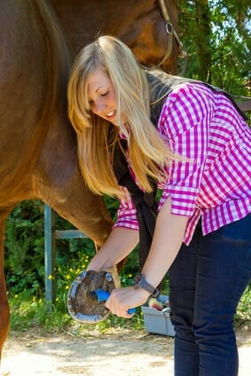 Einstellungstest Tierpfleger