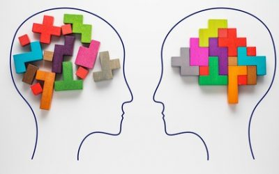 Logische Schlussfolgerungen: Effektives Onlinetraining